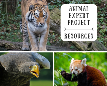 image of animals and title animal expert project resources